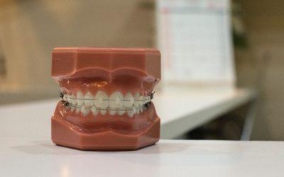 Stomatologia i ortodoncja