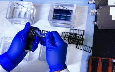 Rodzaje i opis testów genetycznych. Dlaczego to takie istotne?